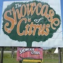 Showcase To Citrus